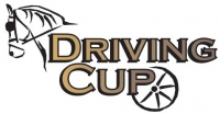Dviving Cup 2018